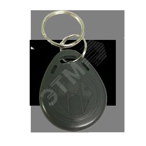 Брелок RFID T5577 (перезаписываемый) (RFID T5577)