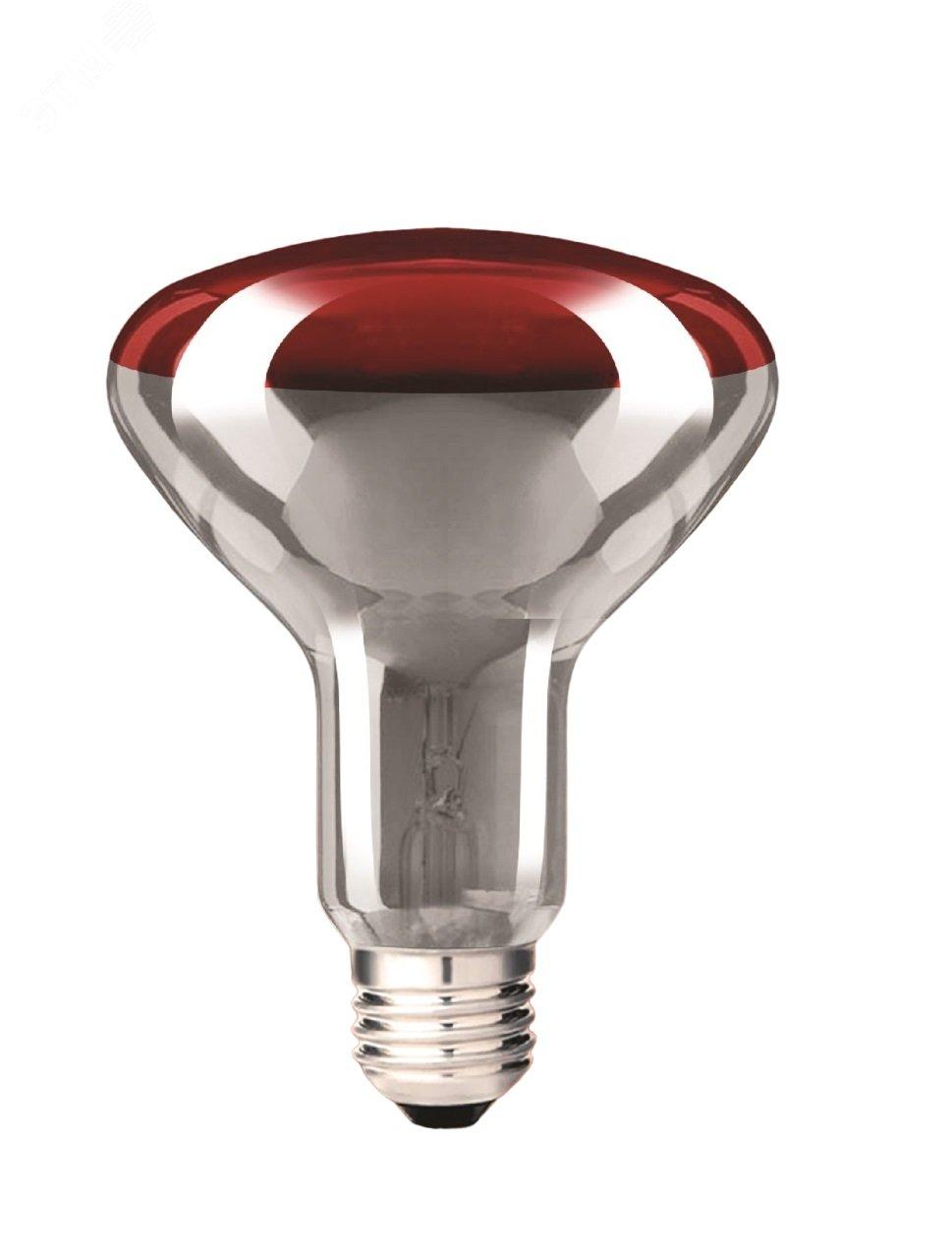 инфракрасная лампа для курятника купить